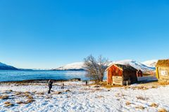 Northern Norway. Beautiful winter landscape of Northern Norway with wooden huts overlooking breathtaking fjords scenery Royalty Free Stock Images