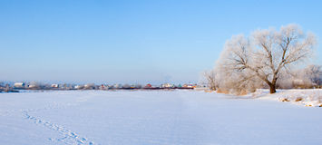 Beautiful winter landscape. Panorama. Royalty Free Stock Image