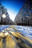 Beautiful winter landscape with a road Stock Photography