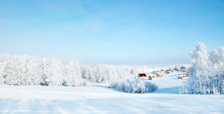 Beautiful winter landscape with rural houses and snowy woods Royalty Free Stock Photos