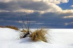 Beautiful winter landscape, and Sea - in depth, output from the marina Gdansk Stock Images