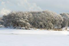 A beautiful winter landscape. Beautiful winter landscape on the shore of a frozen lake Stock Photos