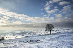 Beautiful Winter landscape snow covered fields in countryside Stock Photos