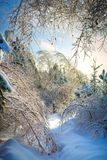 Beautiful winter landscape with snow covered road on frosty day royalty free stock photos