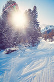 Beautiful winter landscape  snow covered trees Royalty Free Stock Images