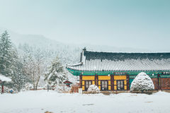 Odaesan mountain Woljeongsa temple at snowy winter in Pyeongchang, Korea