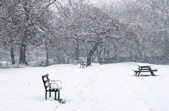 Beautiful winter landscape with snow covered trees. Benches in a Royalty Free Stock Photo