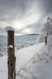 Beautiful winter landscape with snow covered trees and fence Stock Photography