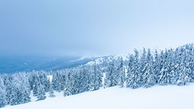 Beautiful winter landscape with snow covered trees. Winter mountains. stock footage