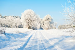 Beautiful winter landscape with snow covered trees - sunny winter day Royalty Free Stock Images