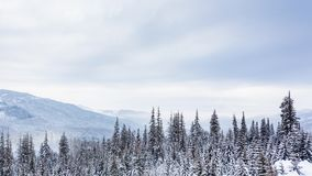 Beautiful winter landscape with snow covered trees. Winter mountains. stock video