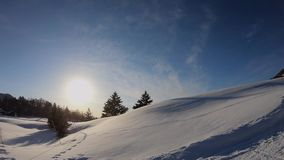 Beautiful winter landscape with snow in a sunshine day.  stock video footage