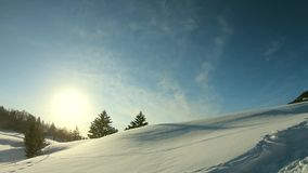 Beautiful winter landscape with snow in a sunshine day.  stock video