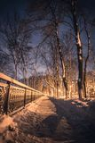 Beautiful winter landscape. Snowfall in park, forest. Mariinsky park in Kyiv, Ukraine stock images