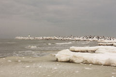Beautiful winter landscape with snowy breakwater and ice, Baltic Sea Royalty Free Stock Images