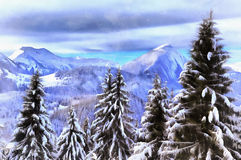 Beautiful winter landscape with snowy trees stock photos