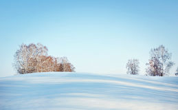 Beautiful winter landscape in sunny day with blue sky and trees on horizon. Beautiful winter landscape in sunny day with clear blue sky and trees on horizon stock image