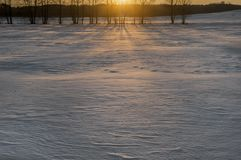 Beautiful winter landscape on the field. Winter sunset stock photography