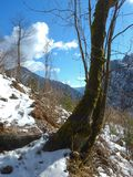 Beautiful winter landscape of totes gebirge mountains. In austria Royalty Free Stock Photo