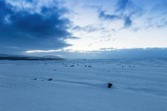 Beautiful winter landscape windy and covered snow in Iceland. Beautiful winter landscape, windy and covered snow with beautiful sky, cold frosty weather, beauty royalty free stock photography
