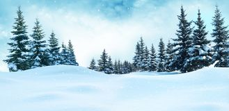 Free Beautiful Winter Landscape With Snow Covered Trees. Stock Photo - 131096360