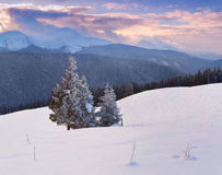 Beautiful winter morning. In the mountains Stock Photos