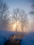 Beautiful winter morning. A rising sun in the winter park Stock Photo
