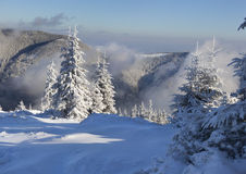 Beautiful winter morning. In the mountains Stock Image