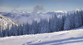 Beautiful winter morning. In the mountains Royalty Free Stock Photo