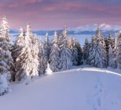 Beautiful winter morning in mountains Stock Photo