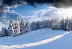 Beautiful winter morning in the mountains. Panorama of the winter morning in the mountains Stock Photography