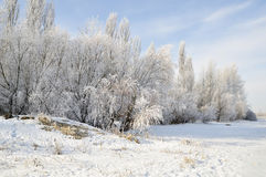Beautiful winter morning on the river. Nature in winter, Ukraine. Beautiful frosty day on the Dnieper river royalty free stock images