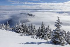 Beautiful winter mountain landscape in the Carpathians, Romania. Above the clouds, sea of clouds. royalty free stock image