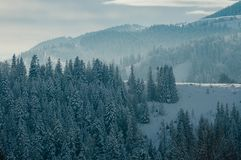 Beautiful winter mountain landscape with forest stock photo