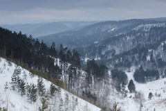 Beautiful winter nature landscape. Snow mountain forest Royalty Free Stock Photography