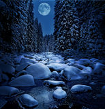 Beautiful winter night Royalty Free Stock Photo