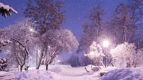 Beautiful winter night landscape of snow covered bench among sno royalty free stock images