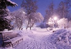 Beautiful winter night landscape of snow covered bench among sno Royalty Free Stock Photos