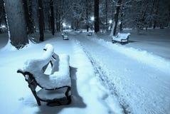 Beautiful winter park Stock Photos