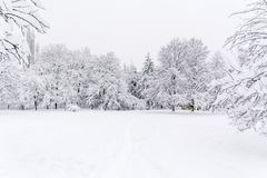 Beautiful Winter park landscape from Sofia,Bulgaria Stock Photography
