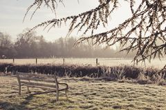 Beautiful winter peyhazh tree in frost and white bench Royalty Free Stock Images
