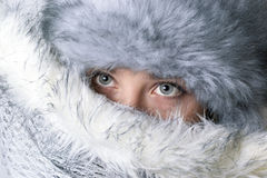 Beautiful Winter Portrait Royalty Free Stock Image