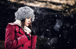 Beautiful winter portrait. Beautiful young fashion woman wearing fur hat at night. Yellow lanterns are in bokeh Stock Image
