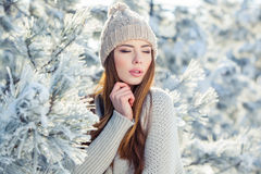 Beautiful winter portrait of young woman in the. Winter snowy scenery Stock Photos