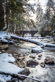 Beautiful winter river scene in the forest as snow covers rocks. Along the river portrait Stock Photography