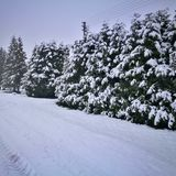 Beautiful Winter road stock photography