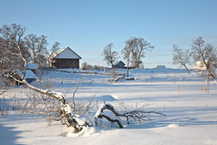 Beautiful winter rural landscape Stock Image