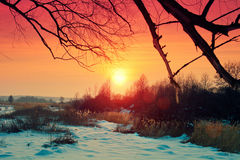 Beautiful winter rural sunset Stock Photos