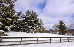 Beautiful winter scene Royalty Free Stock Photo