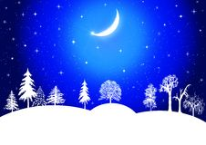Beautiful Winter scene. Winter christmas landscape in night with snow flakes Stock Images